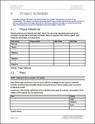 Conversion Plan MS Word Template
