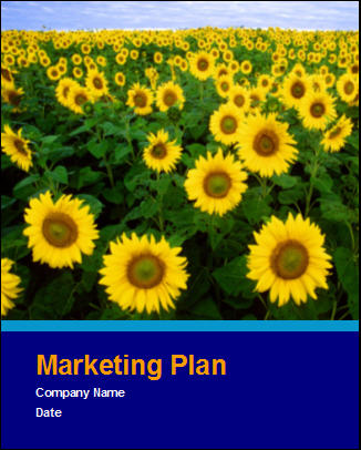 Click here to download your Marketing Plan template