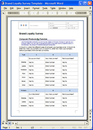 Market research plan templates 5 x ms word 14 x excel for Brand assessment template