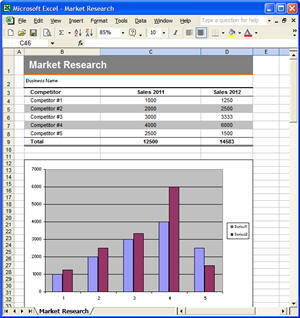 Market Research, Excel Template